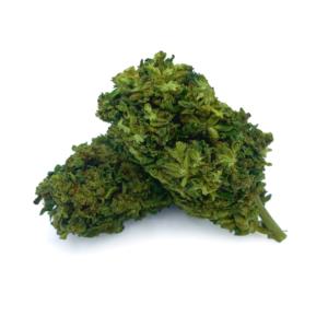 top quality Umpqua bulk hemp flower